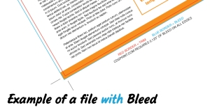 Flyer with Bleed